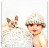 Кошка и ребёнок в доме