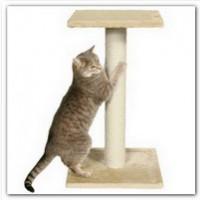 Что делать если кошка точит когти о мебель?